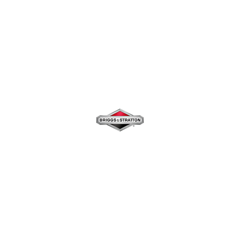 808116S Filtre de carburant Briggs & Stratton ORIGINE